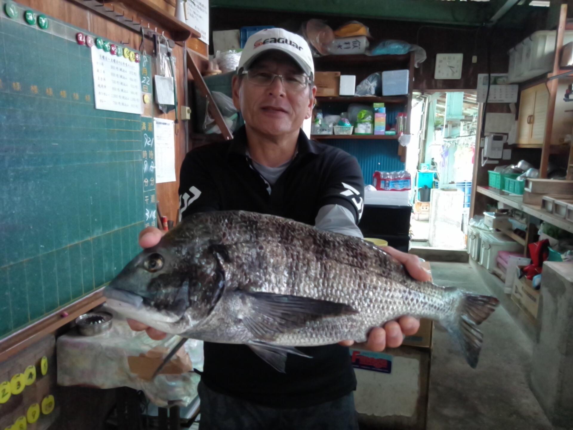 2kg超級ごっつい体型のクロダイ釣れる(^^)vサムネイル