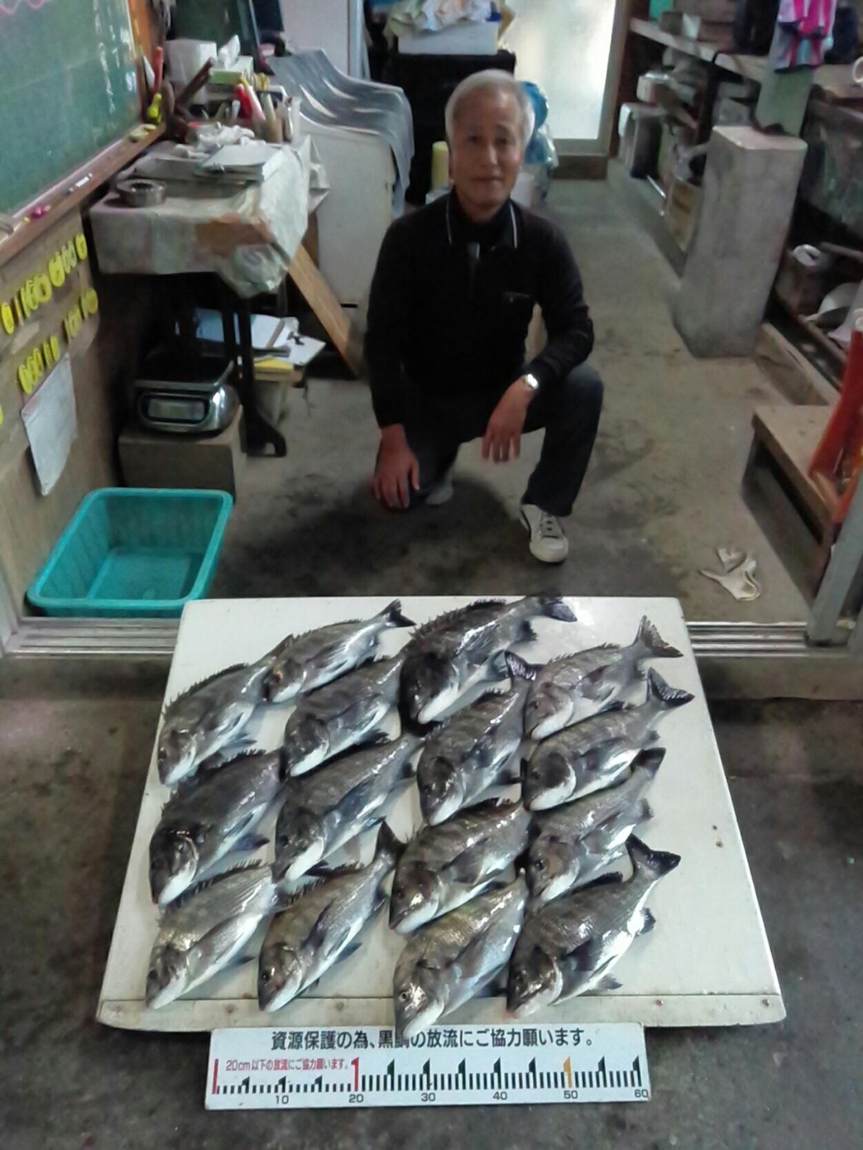 連日、一文字堤でクロダイ好漁‼️サムネイル