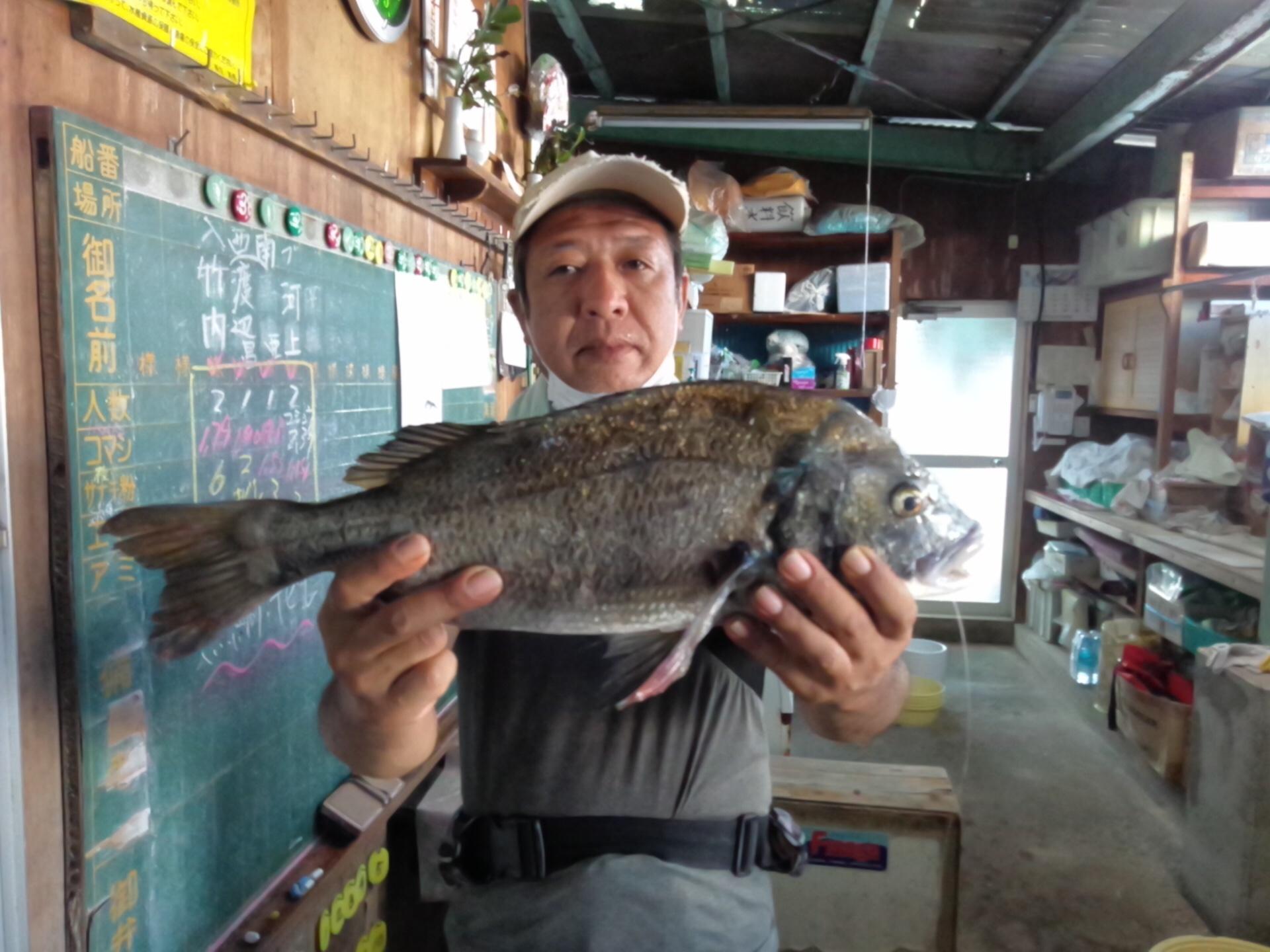 貯木場、朝一で年無し釣れるo(^▽^)oサムネイル